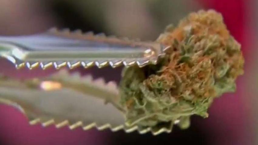 Aprueban_tres_vendedores_de_marihuana_en_Lynwood.jpg