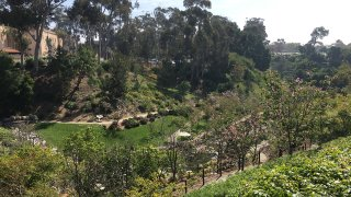 Balboa-Park-Japanese-Friendship-Garden-Garske