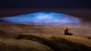 Bioluminescence in La Jolla
