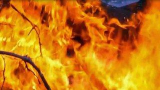 Brush-Fire-Generic-Flames-0