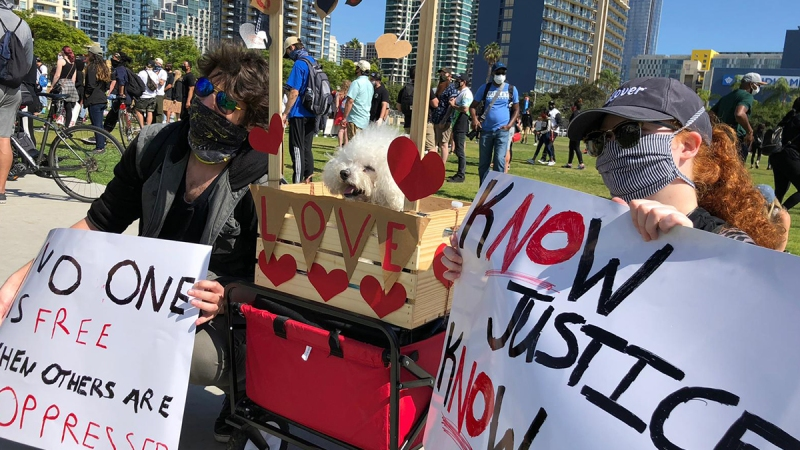 Segundo fin de semana con protestas en San Diego