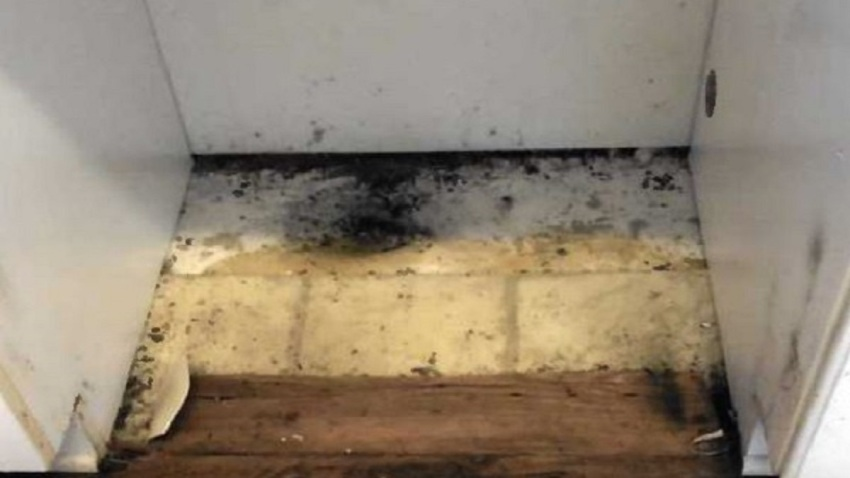 Photo of mold inside military housing