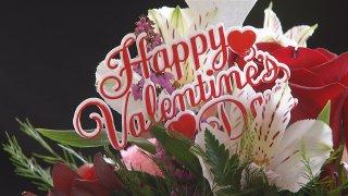 valentine's day flowers generic