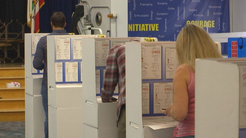 People vote in cardboard booths