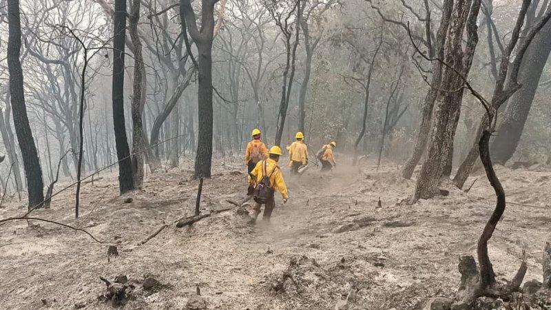 Imágenes del incendio en Tepoztlán que ardió por más de 5 días