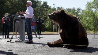 John Cox Announces Run For California Governor With 1,000-Pound Bear